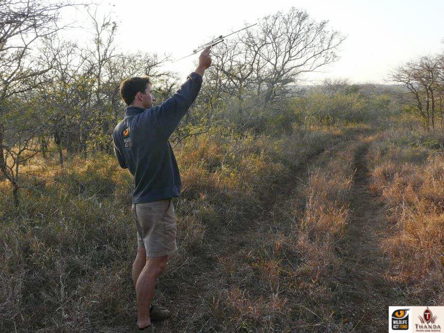 Dr Simon Morgan trying for signal for the Wild Dogs