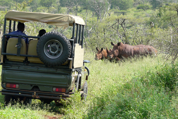 Wildlife ACT Fund Community Game Drives - Community Outreach Conservation Programs