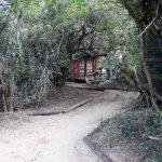 Tembe Pathway