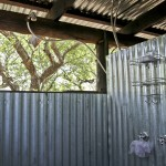 iMfolozi's volunteer shower