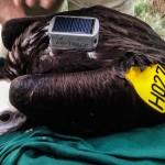 vulture GPS/GSM backpack