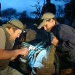 Rhino internal VHF transmitter