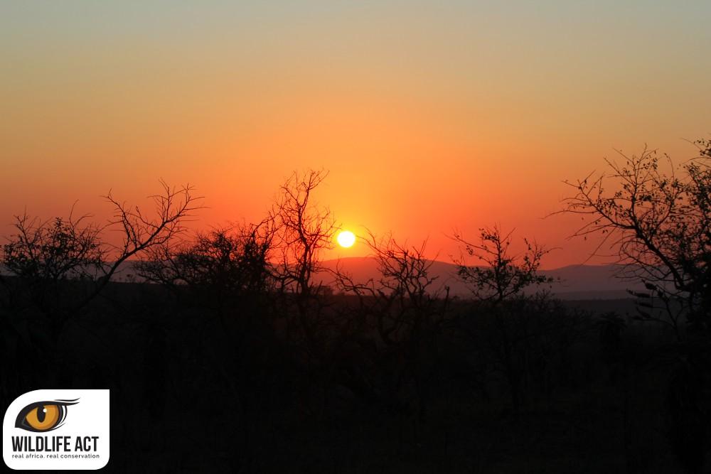 Sunrise Zululand Rhino Reserve.