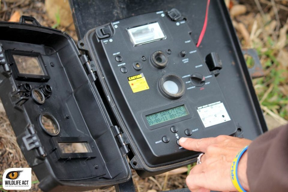 camera-traps-used-in-hip-leopard-survey