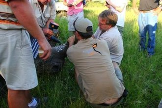 Wildlife ACT helps in the fight against rhino poaching
