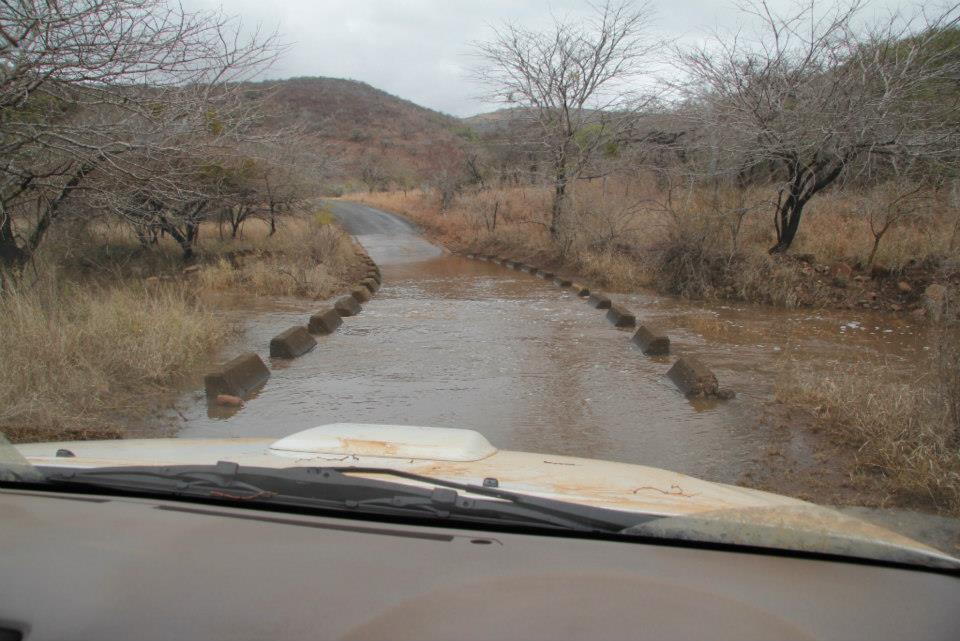 Spring Rain in Mkuze Game Reserve