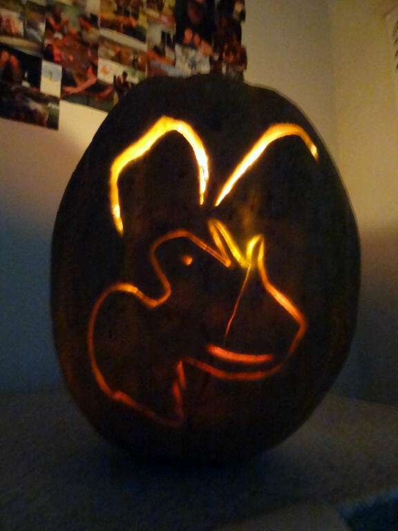 The finished 'glowing' Wildlife ACT Halloween pumpkin