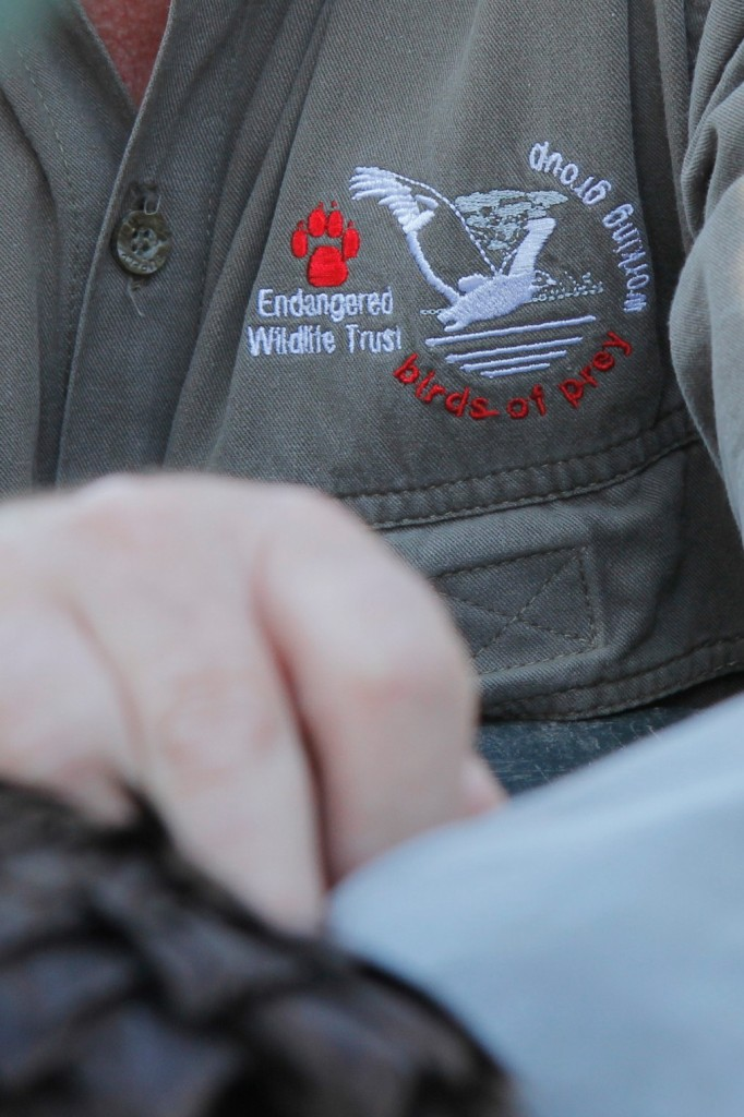 The Wildlife ACT Fund works with the Endangered Wildlife Trust (EWT)