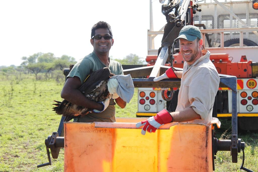 Ezemvelo KZN Wildlife staff climbing into the cherry picker.