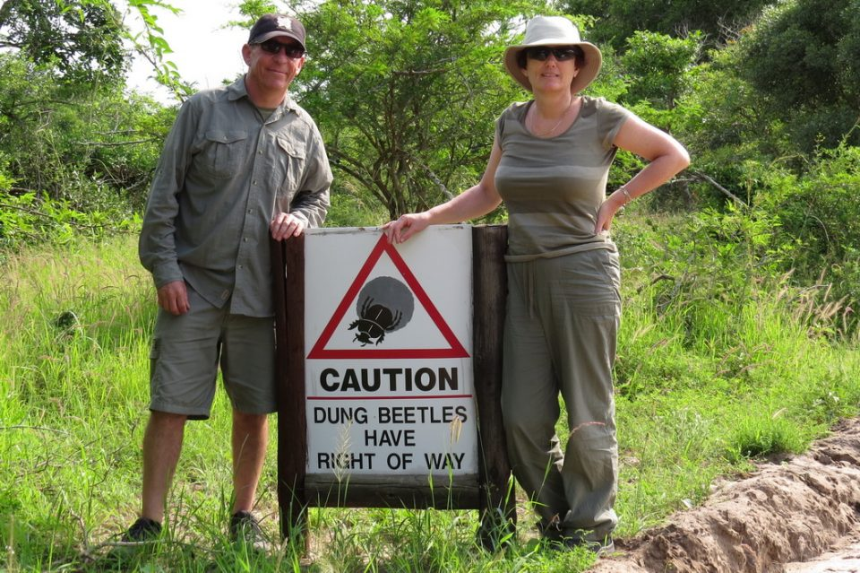 Tembe Elephant park dung beetle sign