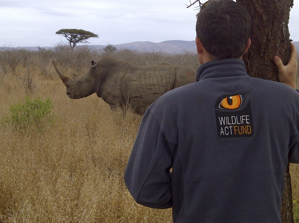 Dr Simon Morgan, White Rhino, Wildlife ACT Fund - John Hume Rhino Horn Auction Arguments