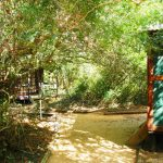 Tembe Camp Cabins