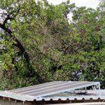 iMfolozi Solar Panels