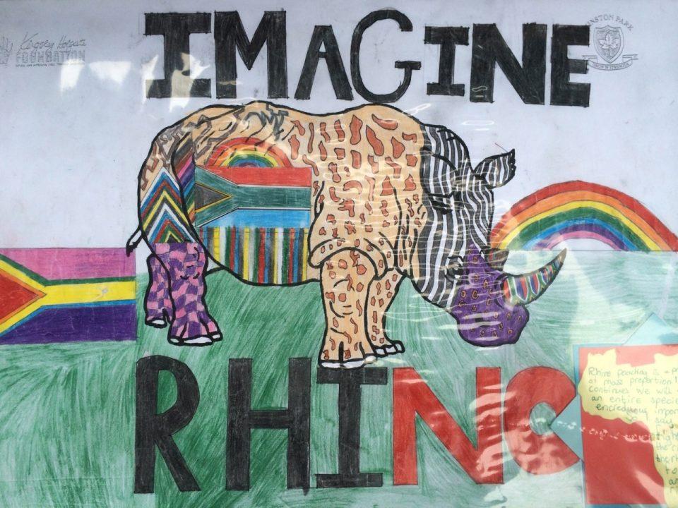 Kingsley Holgate rhino art - woolworths theme