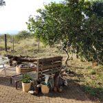 Manyoni Volunteer Camp - Braai Area