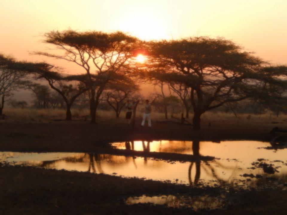 Sunset Wildlife ACT