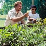 Volunteer in the Seychelles