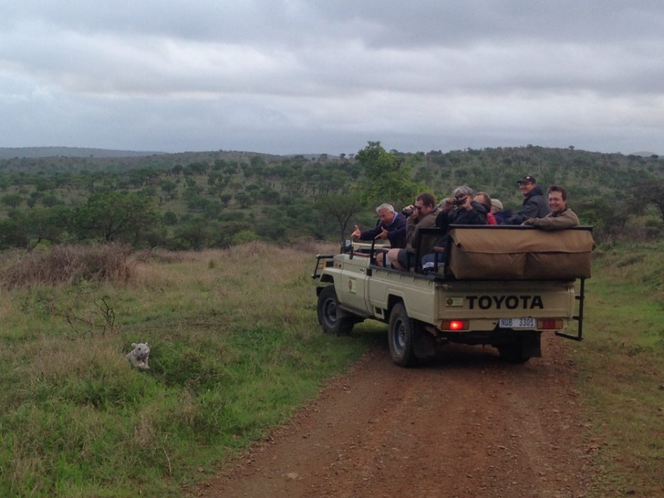 Guide Michael Lotter and his guests with Craig the rhino