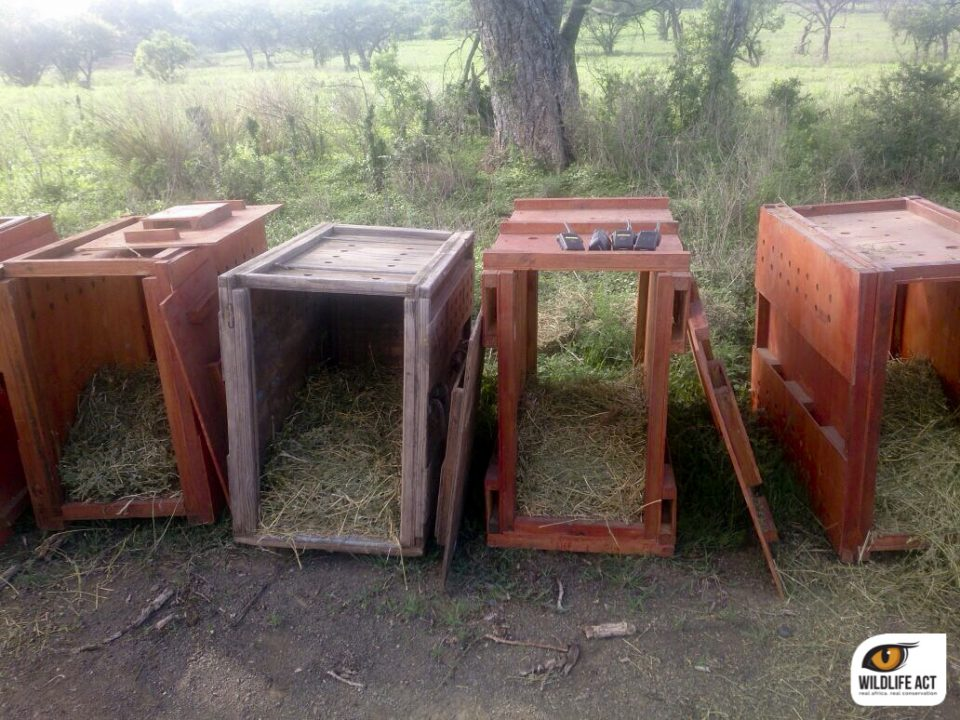 Crates ready and waiting