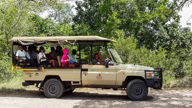 Community Bush Camp Game Drive