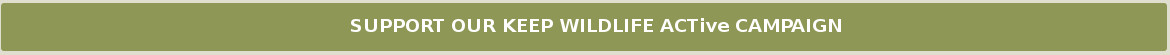 Keep Wildlife ACTive Button
