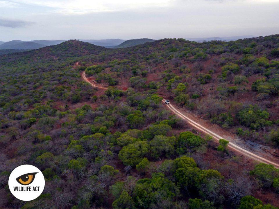Somkhanda Game Reserve 3