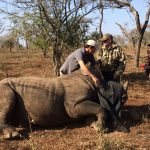 Rhino Dehorning operation on Somkhanda Game Reserve in 2017.