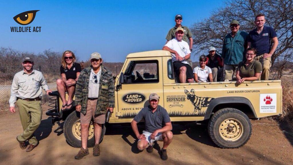 Kruger Wild Dog release