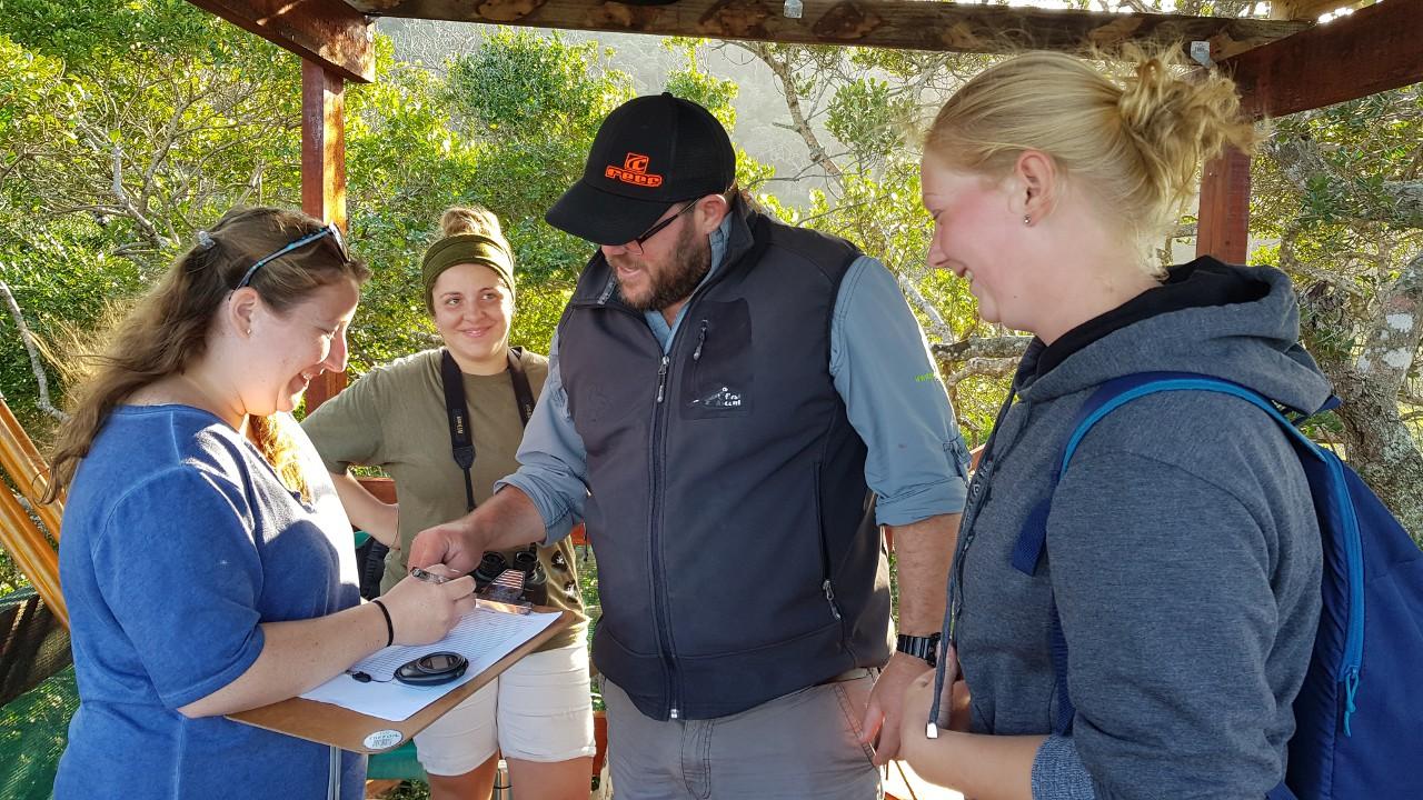 Humpback Whale Survey 2