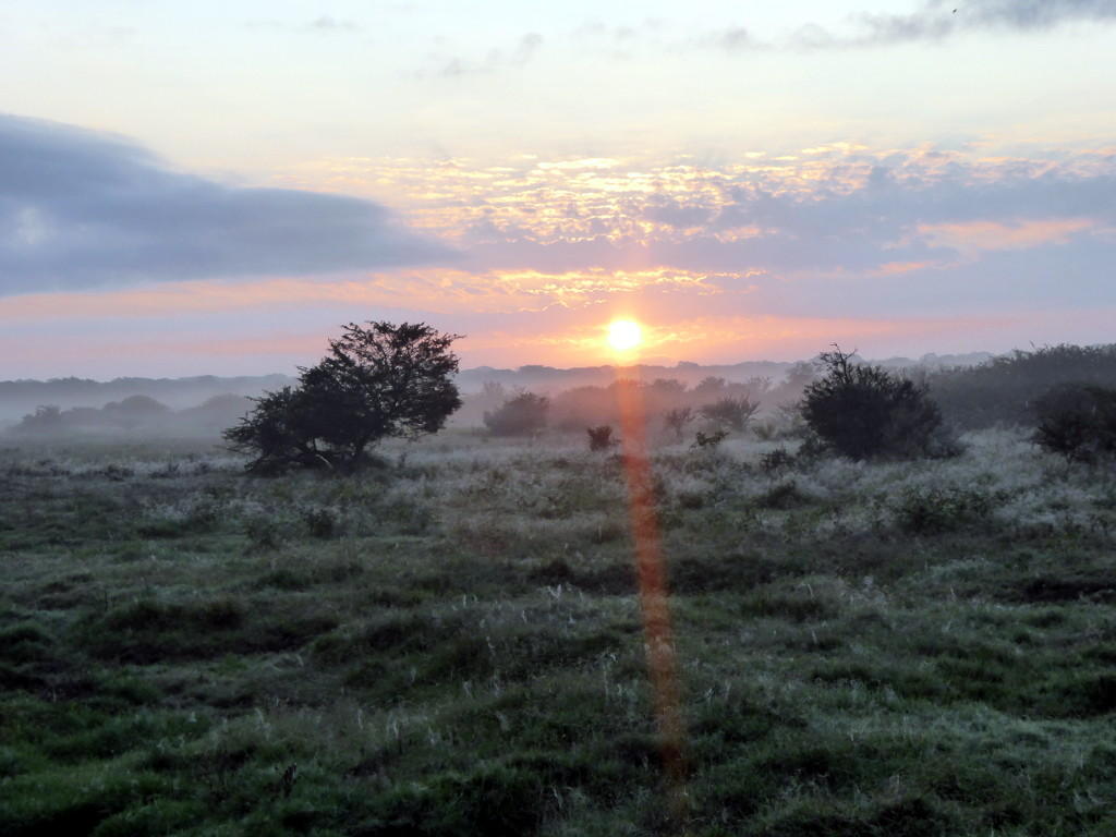 Sunrise on Tembe Elephant Park