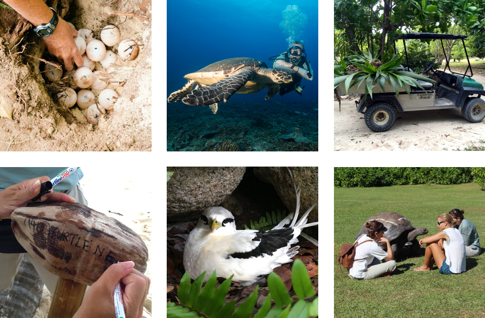 Seychelles Marine Conservation Project Activities