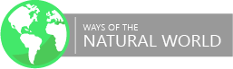 Ways of the Natural World