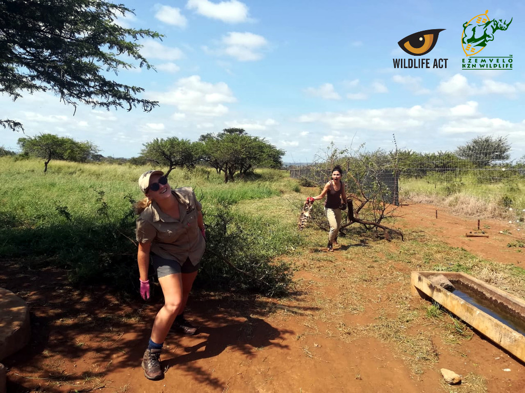 Boma Cleaning and Clearing in uMkhuze Game Reserve