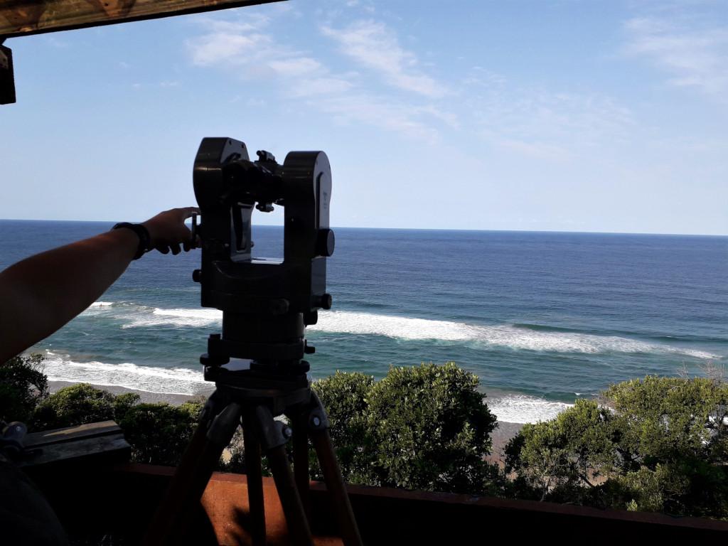 Humpback Whale Survey 2019