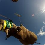 Black Rhino Range Expansion Project (WWF BRREP 2019)
