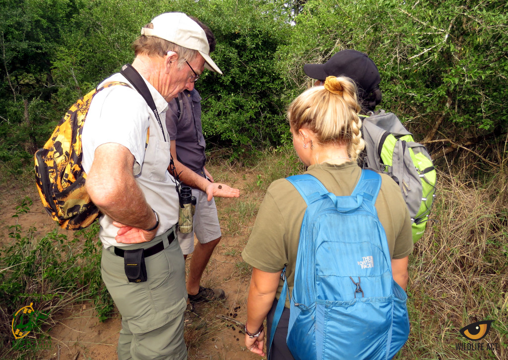 Conservation Training Course - Dung Identification