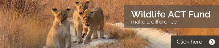 Wildlife ACT Fund