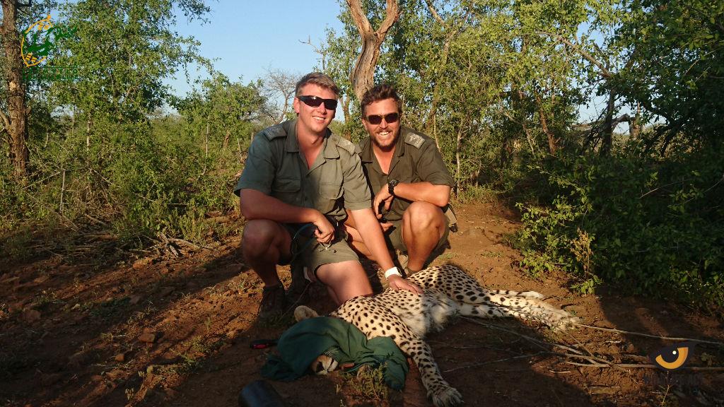 Tales of a Wildlife Vet - Dr Rowan Leeming