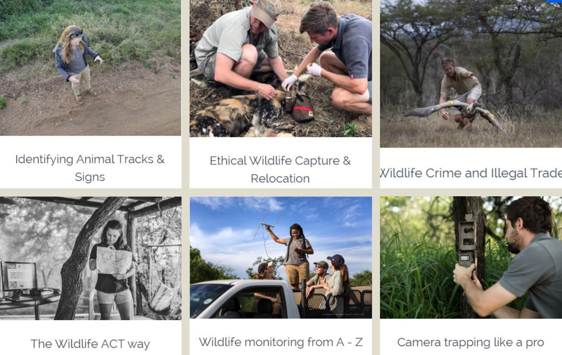Online Conservation COurse - Endangered & Priority Species Conservation & Habitat Management
