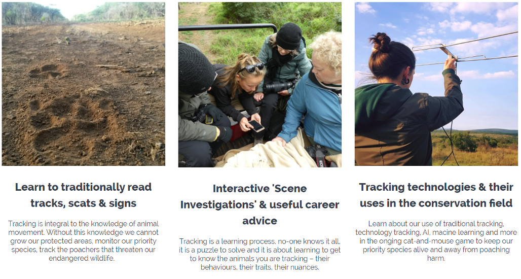 Online Conservation Courses - Wildlife Tracking for Conservationists