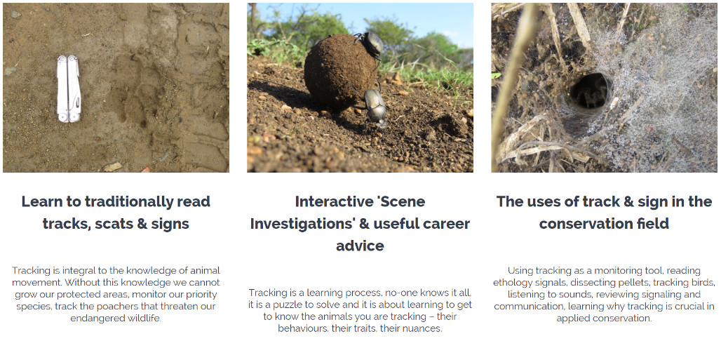 Online Conservation Courses - Tracks & Signs: An Introduction for the Conservation Enthusiast