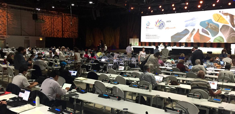 IUCN World Conservation Congress 2021